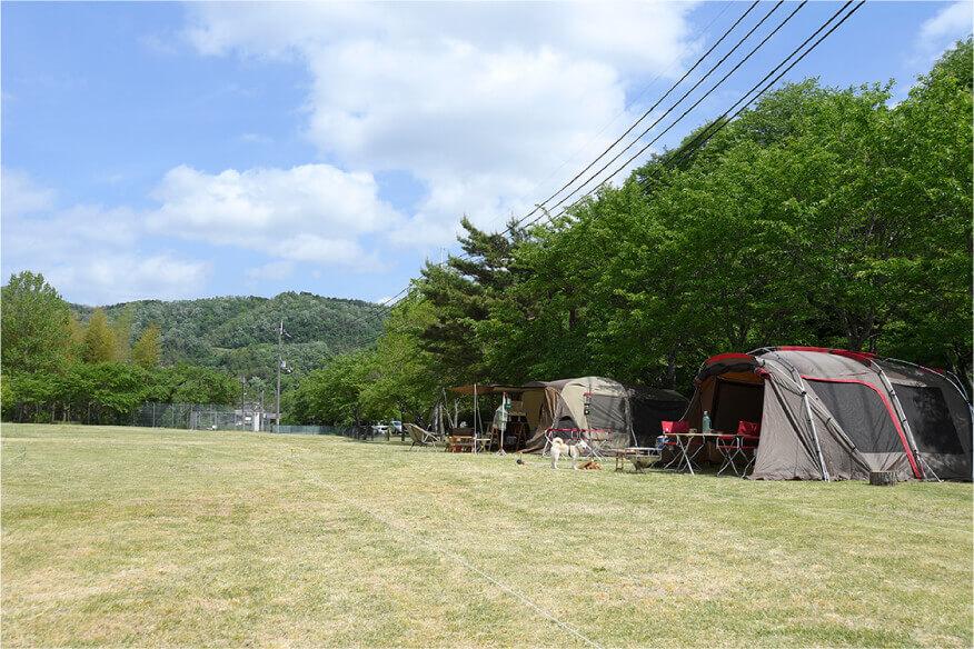 芝生キャンプサイト